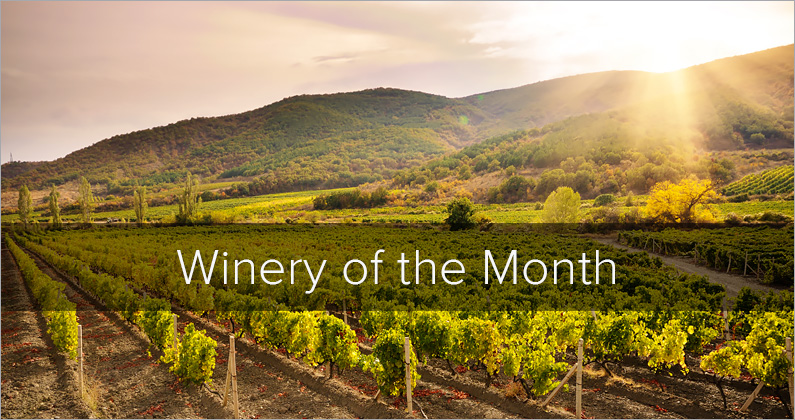 Winery of the Month – Dominus Estate