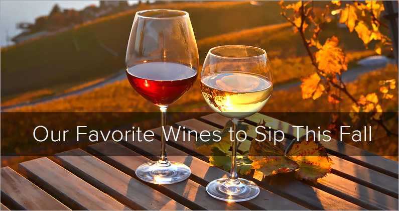 Our Favorite Wines to Sip this Fall