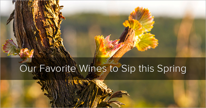 Our Favorite Wines to Sip this Spring